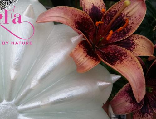 L'estate è arrivata, approfitta delle promozioni estive su SeFa Design by Nature!